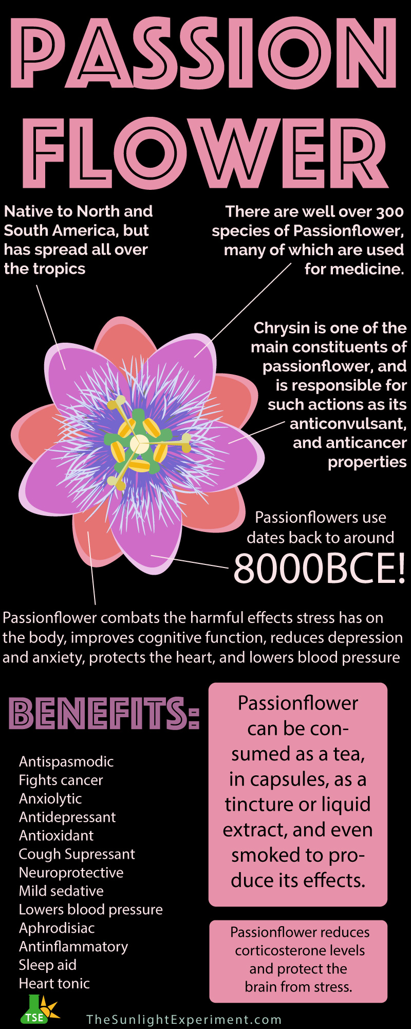 Passionflower a calming influence