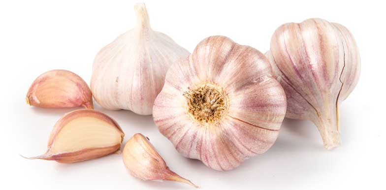 Why AGED Garlic Extract is better