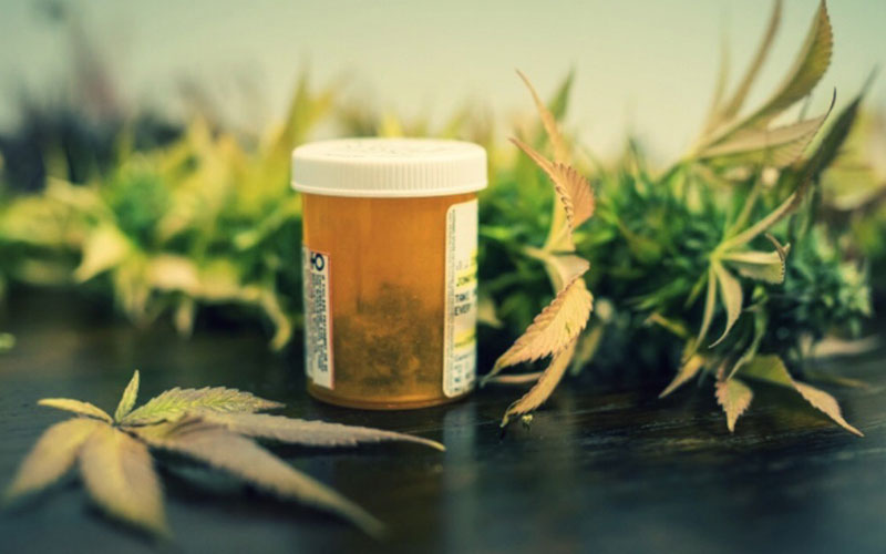 Medicinal Marijuana—Its Pros and Cons and Everything in Between