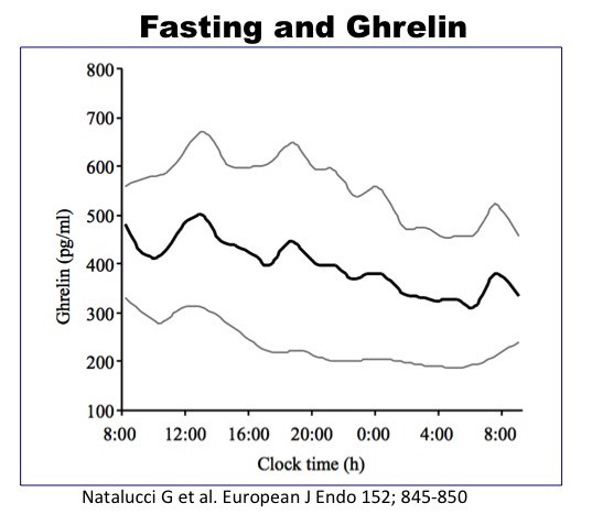Fasting decreases hunger which makes it more effective than dieting